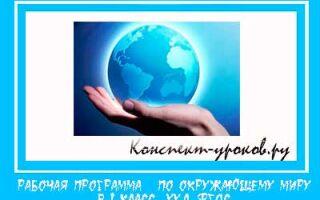 Рабочая программа по окружающему миру для 1 класса на 2018-2019 учебный год