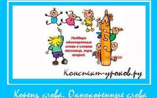 Конспект открытого урока по русскому языку Корень слова Однокоренные слова во 2 классе
