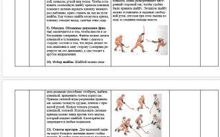 Конспект урока физкультуры (хоккей 7-8 класс)